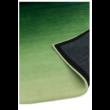 Ombre Zöld Szőnyeg 120x170 cm