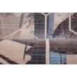MyLaos 458 Ezüst Szőnyeg 80x150 cm