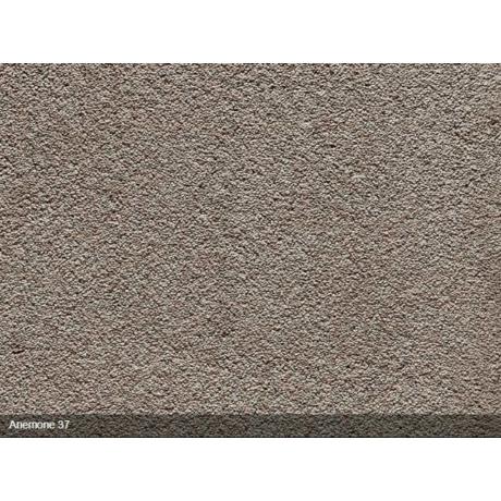 Anemone 37 Padlószőnyeg (400) 11500Ft/m2